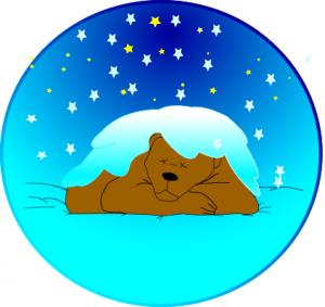 sleeping_bear_in_snow